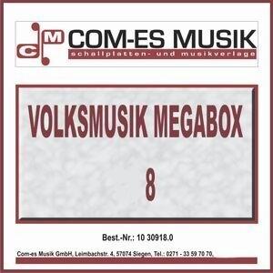 Volksmusik Megabox 歌手頭像