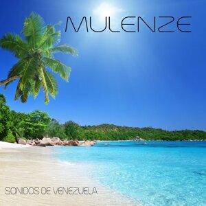 Mulenze 歌手頭像