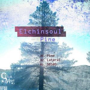 Elchinsoul