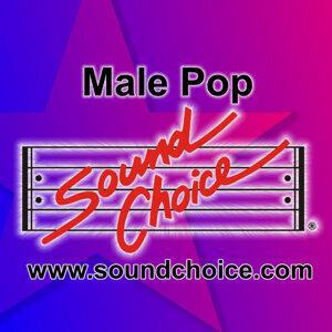 Sound Choice Karaoke, Karaoke - Robert Palmer, Karaoke - Billy Ocean, Karaoke - Billy Squier, Karaoke - Mike and the Mechanics, Karaoke - Phil Collins, Karaoke - The Outfield, Karaoke -The Cure, Karaoke - Talk Talk, Karaoke - T'pau 歌手頭像