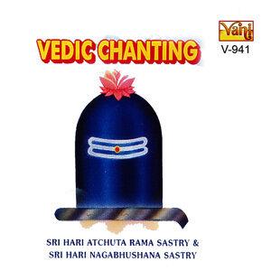 Sri Hari Atchuta Rama Sastry, Sri Hari Nagabhushana Sastry 歌手頭像