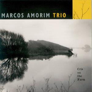 Marcos Amorim Trio 歌手頭像