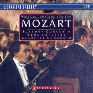 Mozart Festival Orchestra, Camerata Labacensis, Kamil Sreter 歌手頭像