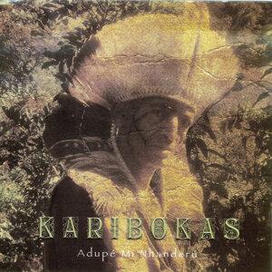 Karibokas 歌手頭像