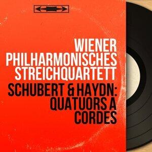 Wiener Philharmonisches Streichquartett 歌手頭像