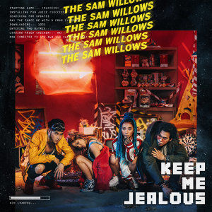 THE SAM WILLOWS 歌手頭像