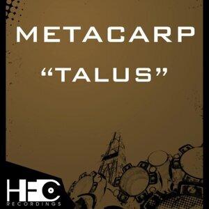 Metacarp 歌手頭像