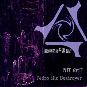 Nit Grit 歌手頭像