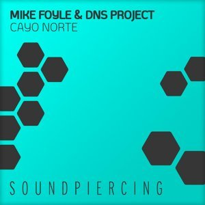 Mike Foyle & DNS Project 歌手頭像