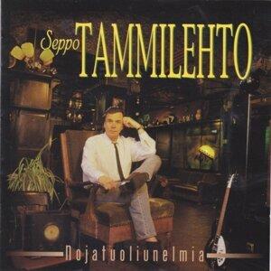 Seppo Tammilehto
