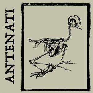 Antenati 歌手頭像