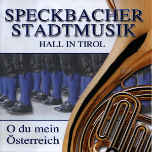 Speckbacher Stadtmusik Hall in Tirol アーティスト写真