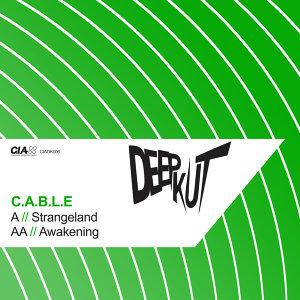 C.A.B.L.E 歌手頭像