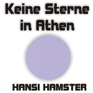 Hansi Hamster 歌手頭像