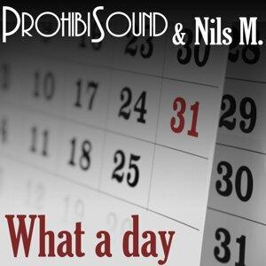 Prohibisound & Nils M. 歌手頭像