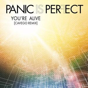 Panic Is Perfect 歌手頭像