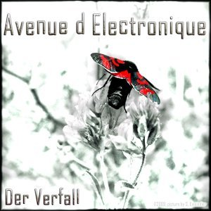 Avenue D Electronique 歌手頭像