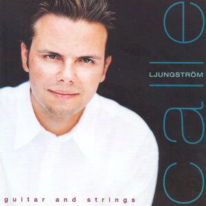 Calle Ljungström 歌手頭像