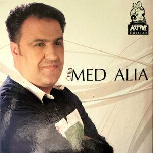Mohamed El Alia 歌手頭像