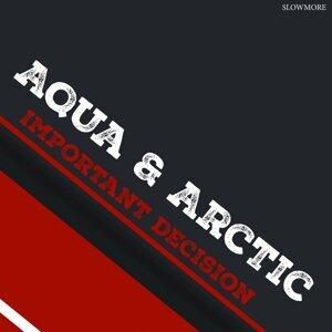 Aqua & Arctic 歌手頭像