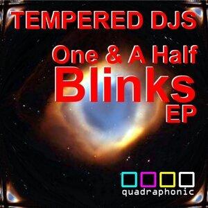 Tempered DJs 歌手頭像