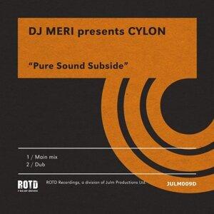DJ Meri presents Cylon 歌手頭像
