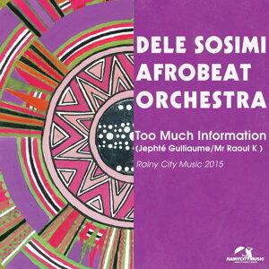 Dele Sosimi Afrobeat Orchestra 歌手頭像