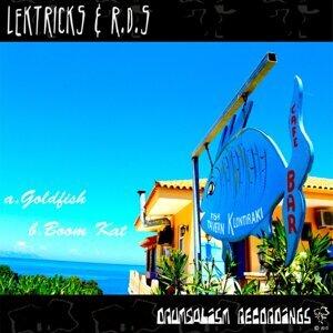 Lektricks & R.D.S 歌手頭像
