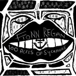 Fionn Regan (費安雷根) 歌手頭像