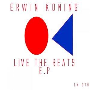 Erwin Koning 歌手頭像