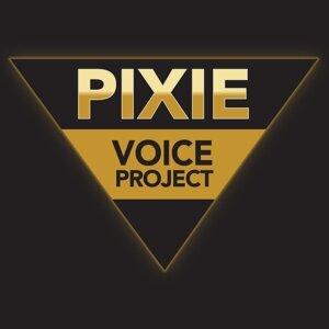 Pixie Voice Project 歌手頭像