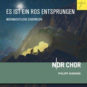 NDR Choir & Philipp Ahmann 歌手頭像