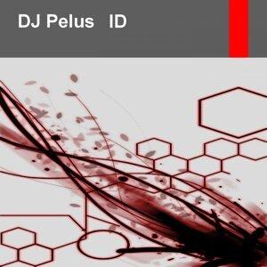 DJ Pelus 歌手頭像