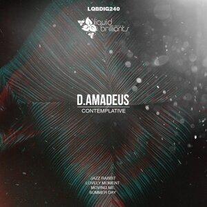 D.Amadeus 歌手頭像