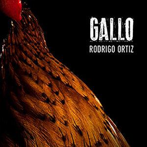 Rodrigo Ortiz 歌手頭像