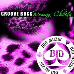 Groove Bugs 歌手頭像