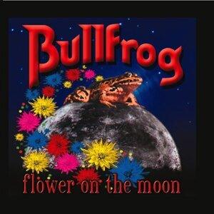 Bullfrog アーティスト写真