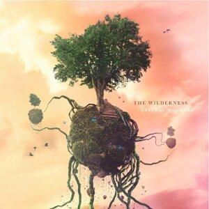 The Wilderness 歌手頭像