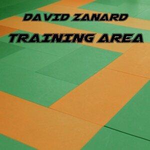 David Zanard 歌手頭像