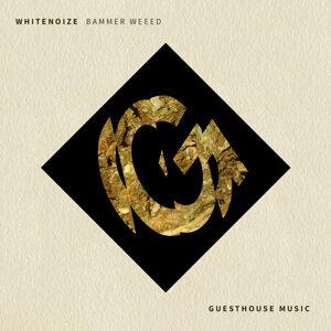 WhiteNoize 歌手頭像