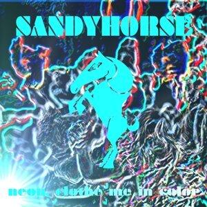 Sandyhorse 歌手頭像