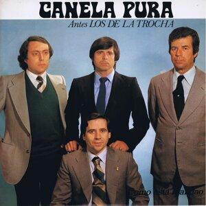 Canela Pura 歌手頭像