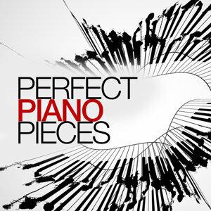 Piano Perfection 歌手頭像