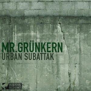 Mr.Grünkern 歌手頭像