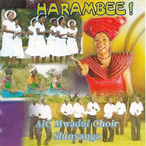 AIC Mwadui Choir Shinyanga 歌手頭像