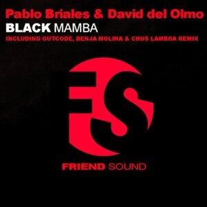 Pablo Briales And David Del Olmo 歌手頭像