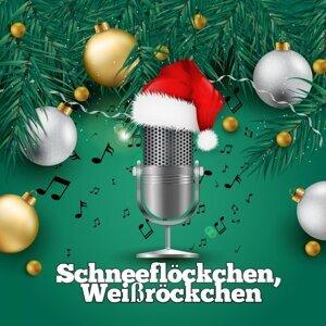 Weihnachts Lieder, Piano Weihnachten 歌手頭像