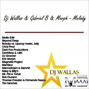 Dj Wallas & Gabriel B & Morph 歌手頭像