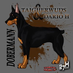 Taigherwuds feat. Dario H 歌手頭像