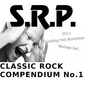 S.r.p. 歌手頭像